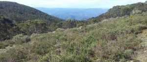 Mount-St-Gwinear