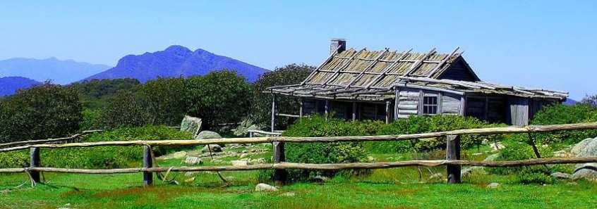 trail-hiking-craigs-hut
