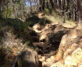 homeinvisagepublic_htmltrailhikingwp-contentuploads201609trail-hiking-glasgow-track.jpg