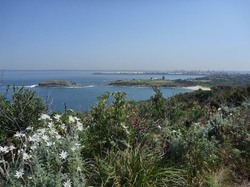 Bare Island to Maroubra via Henry Head