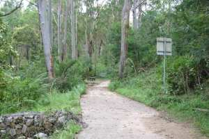 Browns Waterhole Track