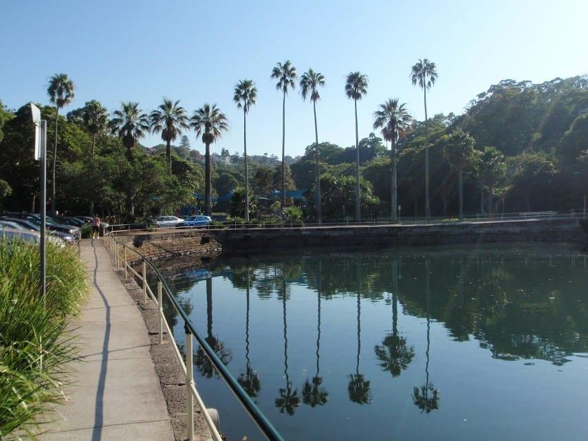 Cremorne Point to Taronga Zoo
