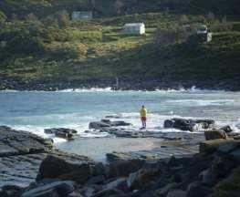 Garie Beach to Garawarra to Burning Palms Circuit