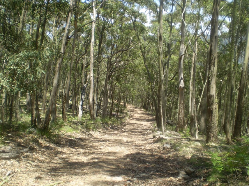 Jenolan Cottages to Caves