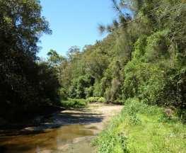 Mt Kuring-gai Track to Berowra station