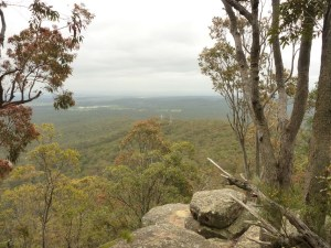 Mt Sugarloaf Northern Track