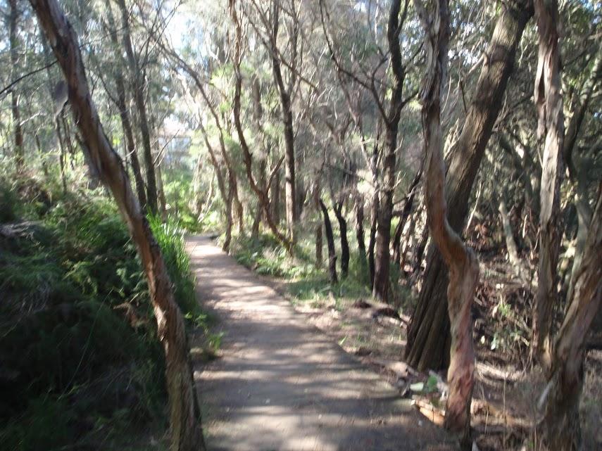 Padstow to the Salt Pan Creek Picnic Area