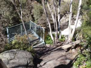 Thredbo to Cascades Lookout return