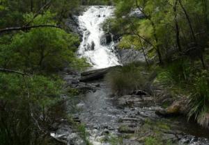 Beedelup Falls Loop Walk