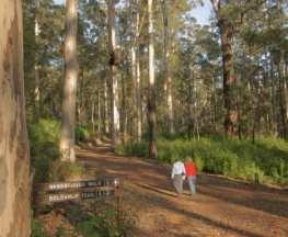 Bolganup Heritage Trail