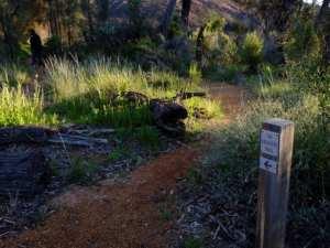Breakers Trail