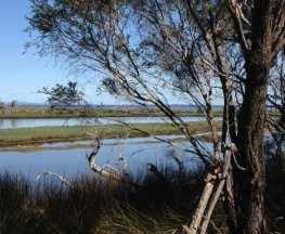 Erskine Nature Trail