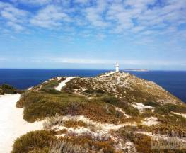 Cape Spencer Lighthouse Walk