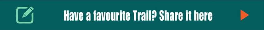 Trail Hiking Hike Banner
