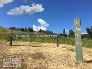 O'Halloran Hill Circuit