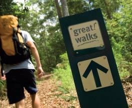 Sunshine Coast Hinterland Great Walk