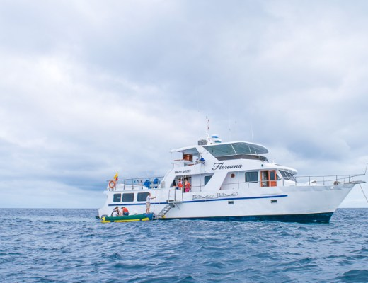 How to Book a Last Minute Galapagos Cruise from Quito - Trailing Rachel