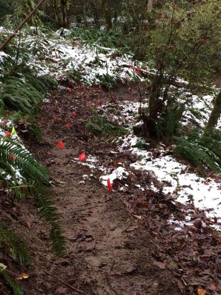 A muddy trail bounded by red flags on wires and snow beside the trail.