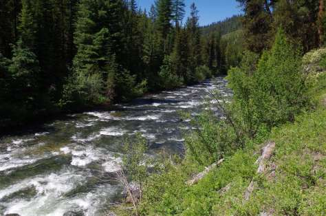 A whitewater river bounded by coniferous trees on steep banks and a steep slope in the distance.