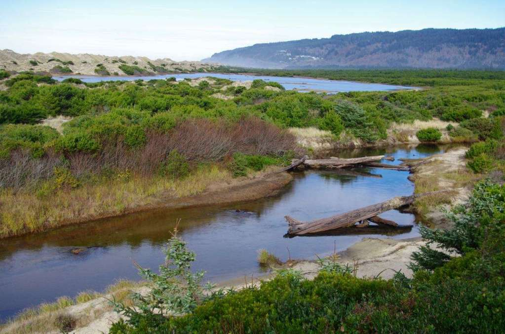 A creek flows through a flat, brushy area with a lake, sand dunes, and a forested coastal promontory in the distance.