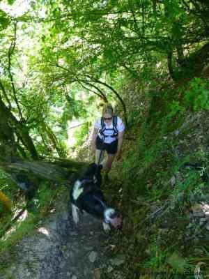 Vorurteile Hundeläufer Trail Running Mosel