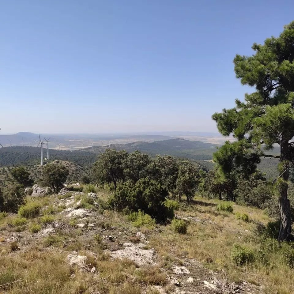 Cima del Rebollo (1323 metros) - Coqueteando con la autosuficiencia