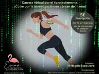 ProyectoEMMA-principal
