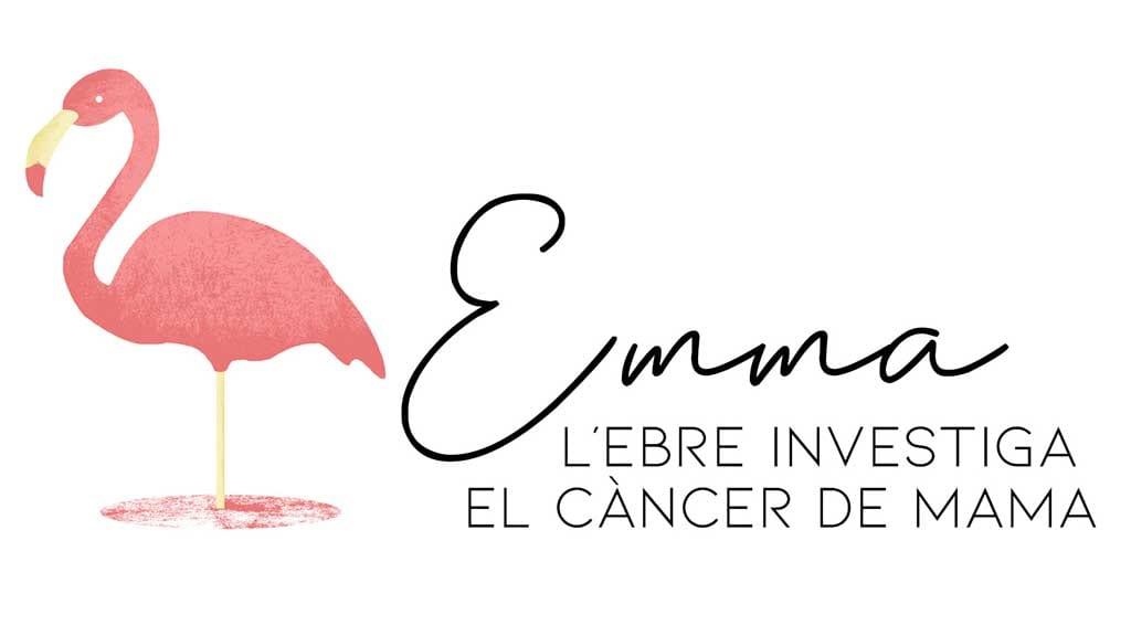 Proyecto EMMA