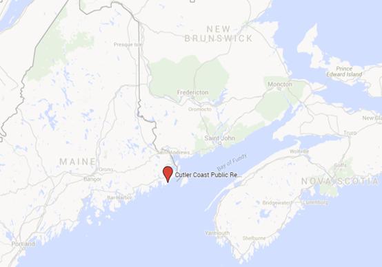 Maine S Bold Coast Trails Unblazed