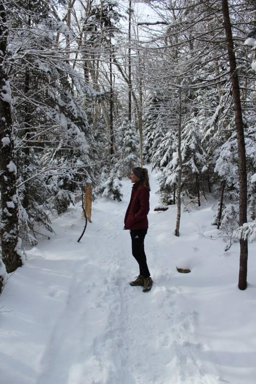 arethusa falls winter