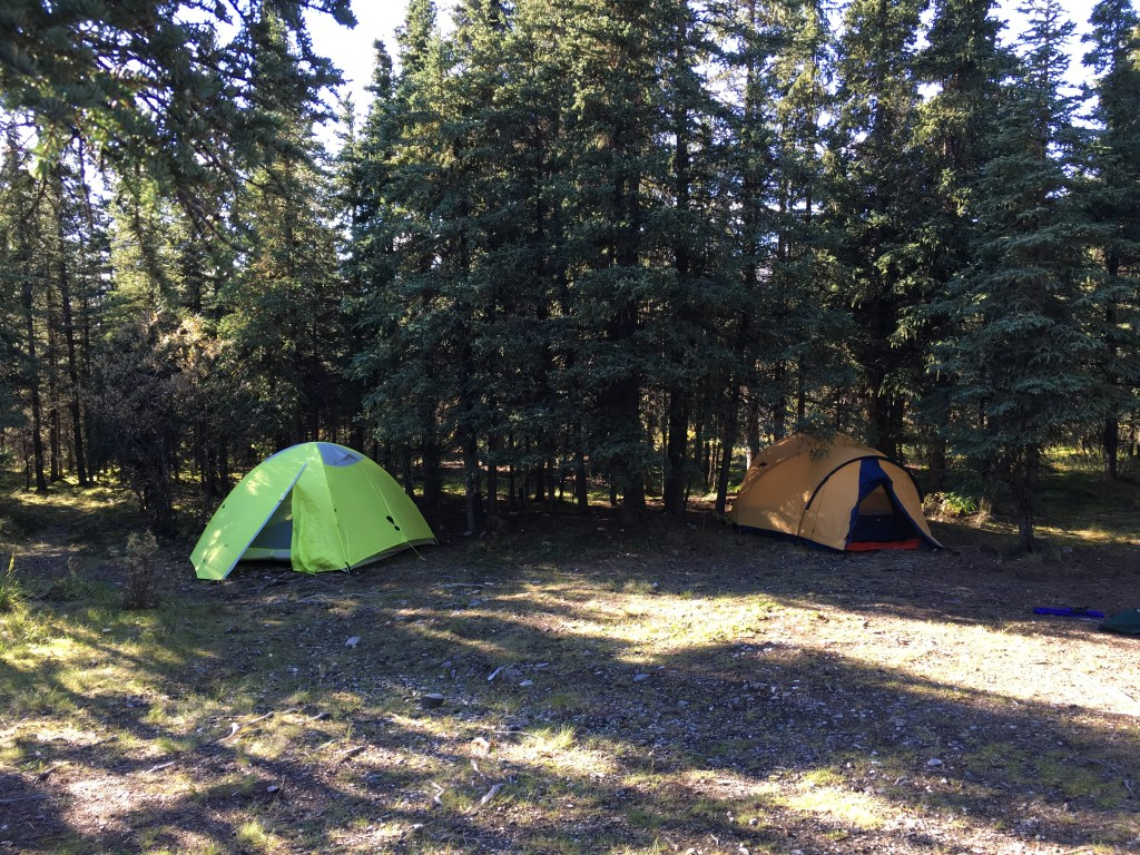 savage river campground denali