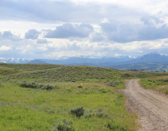 Blacktail Plateau Drive – Yellowstone