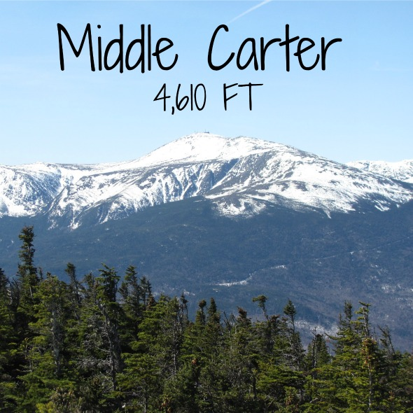 middle carter