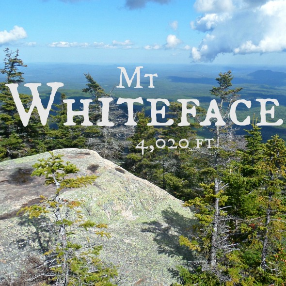 mt whiteface