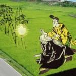 Kiệt tác trên cánh đồng lúa Nhật Bản hay nghệ thuận Tanbo (tanbo art)
