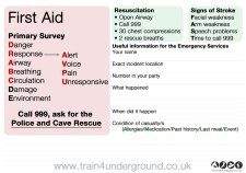 Back cover (first aid reminder and brief cas-card)