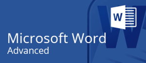 Microsoft Word training @Intellisoft, Singapore