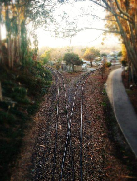 A split in the tracks.