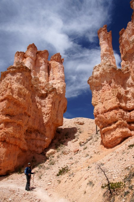 More hoodoos from Bryce Canyon.