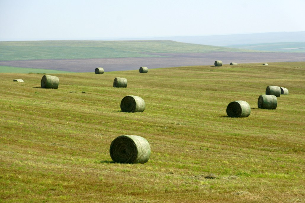 Thousands of hay bales are scattered across fields this time of year. We have yet to sleep in one of them...