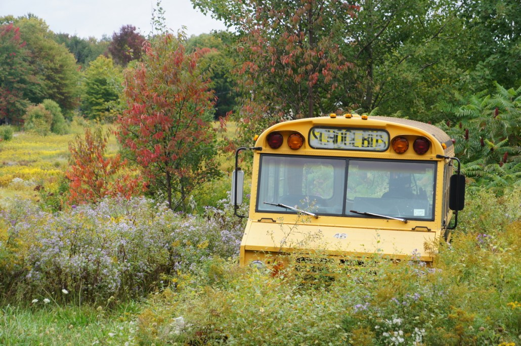 I found this funny - a short bus hiding out in the Tug Hill Wilderness in the middle of nowhere New York.