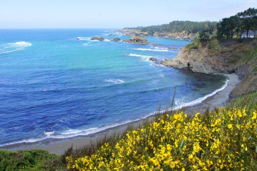 Mendocino coast line