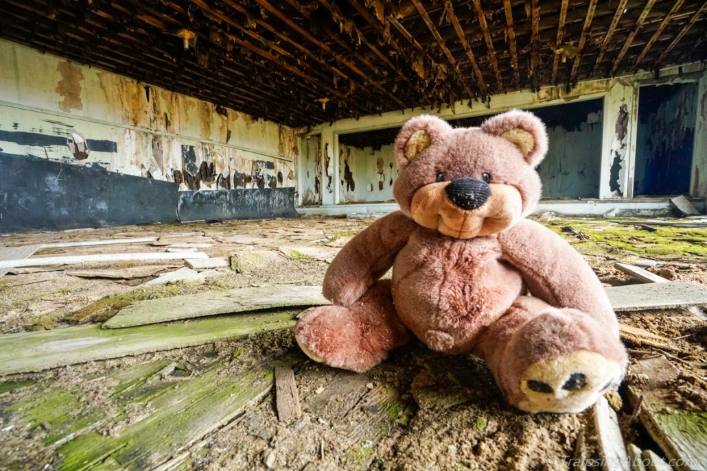 I found this random bear in an abandoned house on my drive from Portland to Idaho. Sadly, he didn't make the gear cut.
