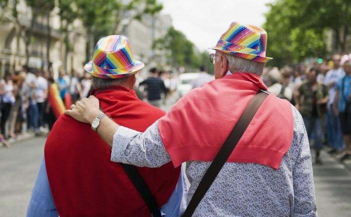 Gruppo Senior LGBT