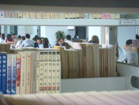 Studenci uczący się w bibliotece Uniwersytetu Pedagogicznego