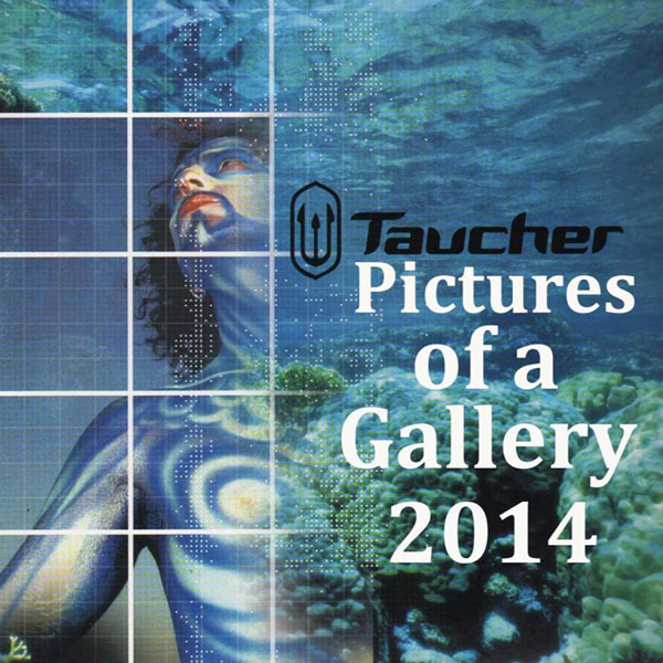 Taucher - Pictures Of A Gallery