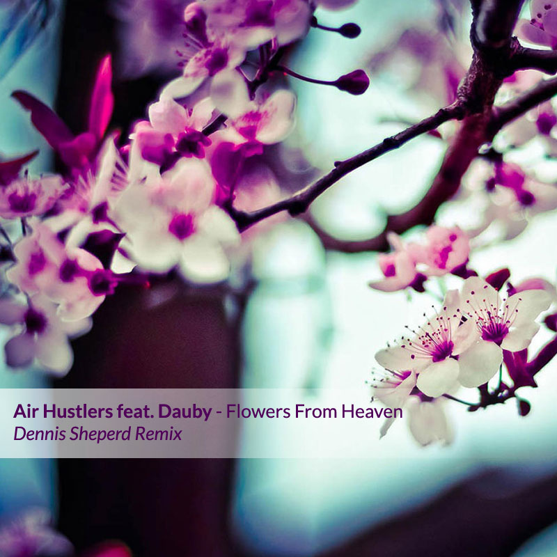 Air Hustlers feat. Dauby - Flowers From Heaven (Dennis Sheperd Remix)