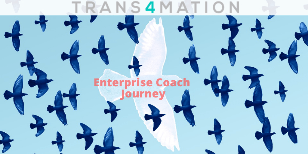 Journey from Team to Enterprise Coach