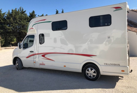 Camions Chevaux D Occasion Transbox France