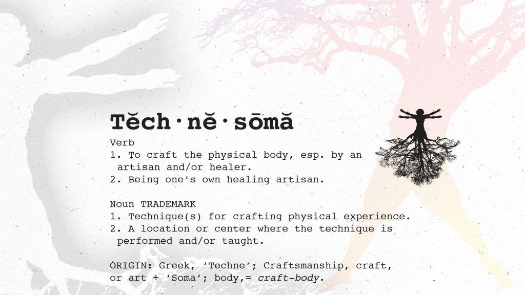 Technesoma-Definition